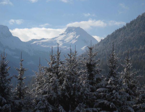 Panorama Trentino Dolomiti